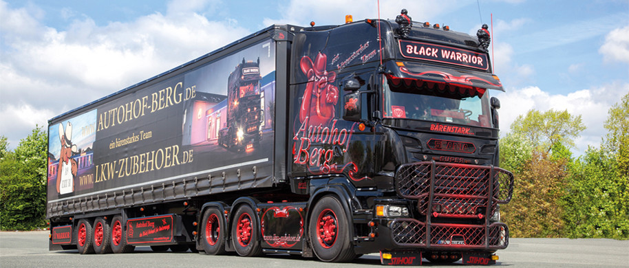 komplett lkw tuning scania as49 startupjobsfa. Black Bedroom Furniture Sets. Home Design Ideas